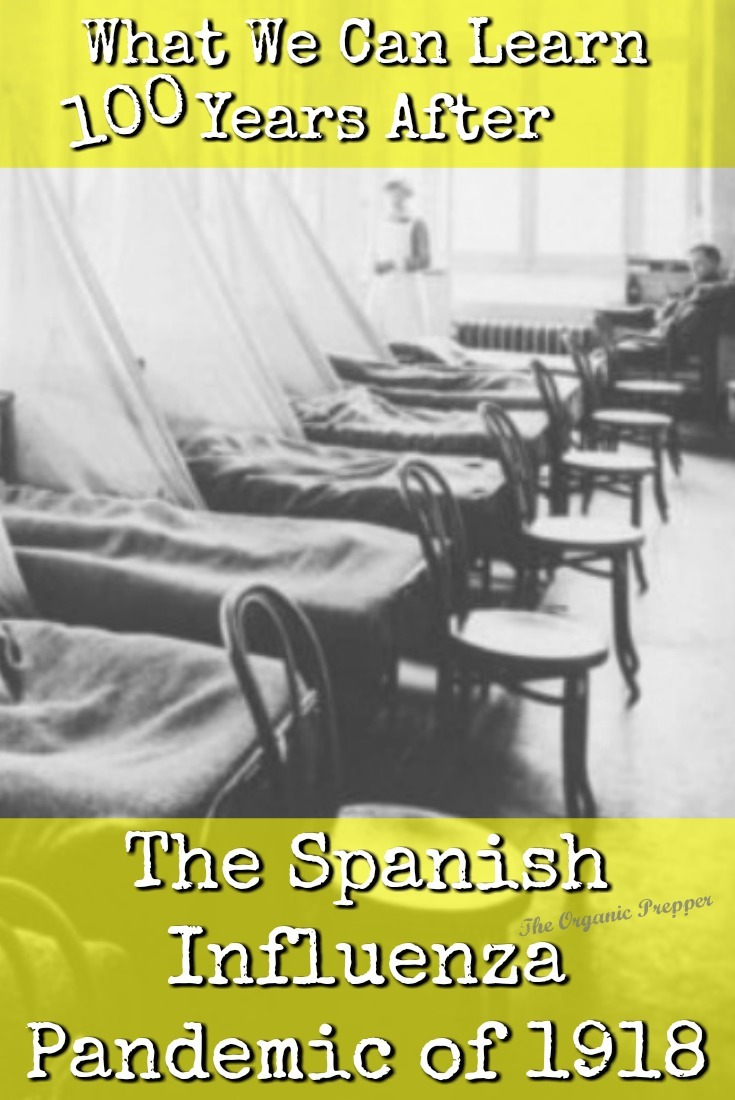 It has been 100 years since the Spanish flu infected 500 million people around the globe and wiped out an estimated 20-50 million of them. Here\'s what we can learn.