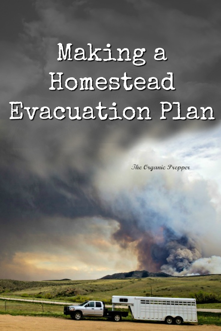 Even if you don't live in a wildfire zone, if you raise livestock, you need to have a homestead evacuation plan. Here are some things you need to think about.