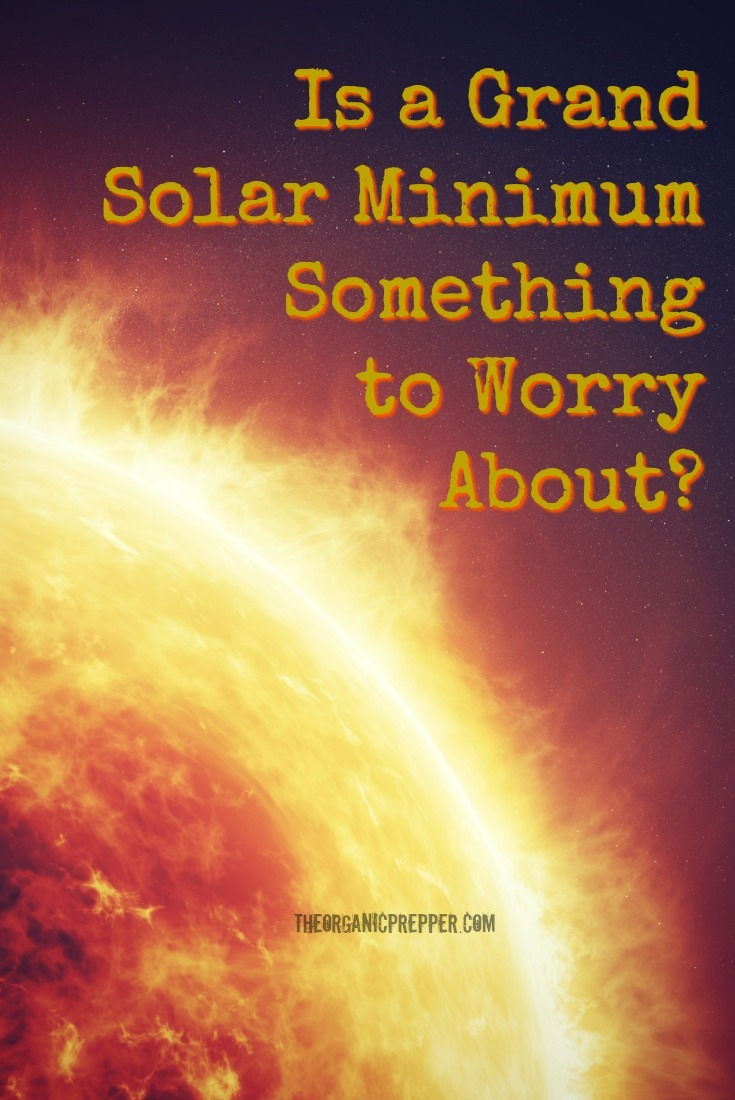 Is a Grand Solar Minimum Something We Should Worry About? Is Another \