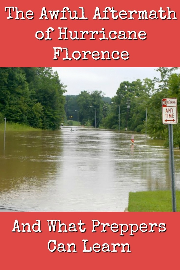 Catastrophes like Hurricane Florence aren\'t just \