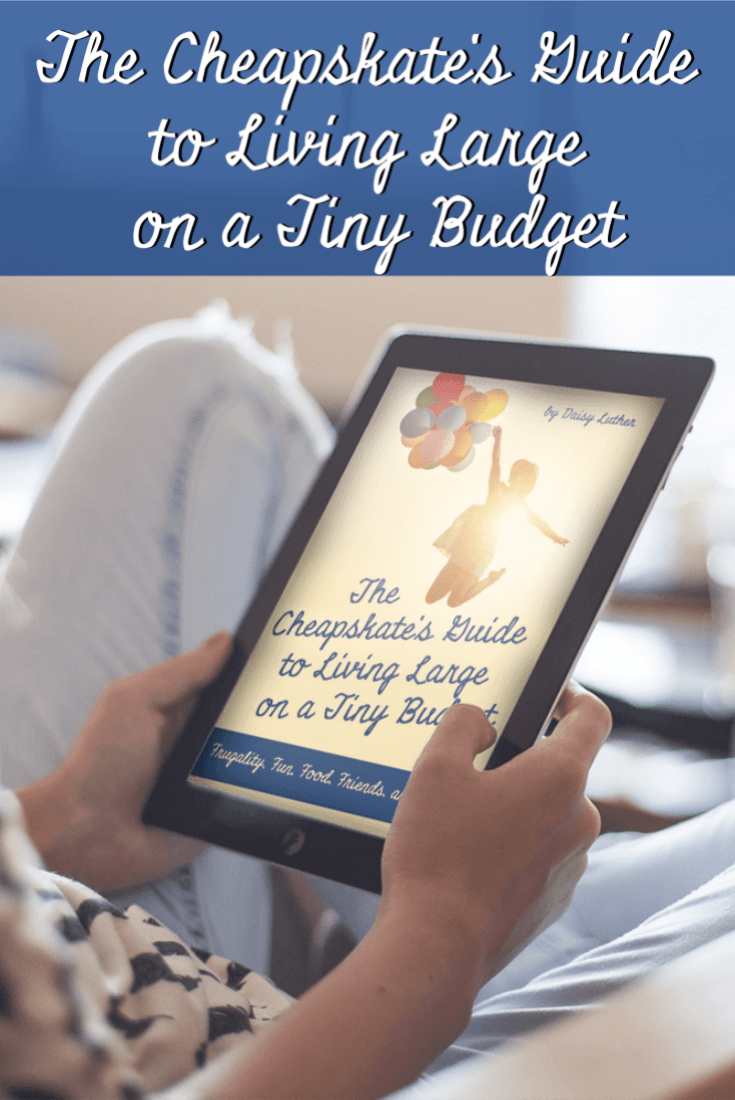 Frugality can give you the freedom to achieve big goals even if you have a small income. This new book will help you live large on a tiny budget. | The Organic Prepper