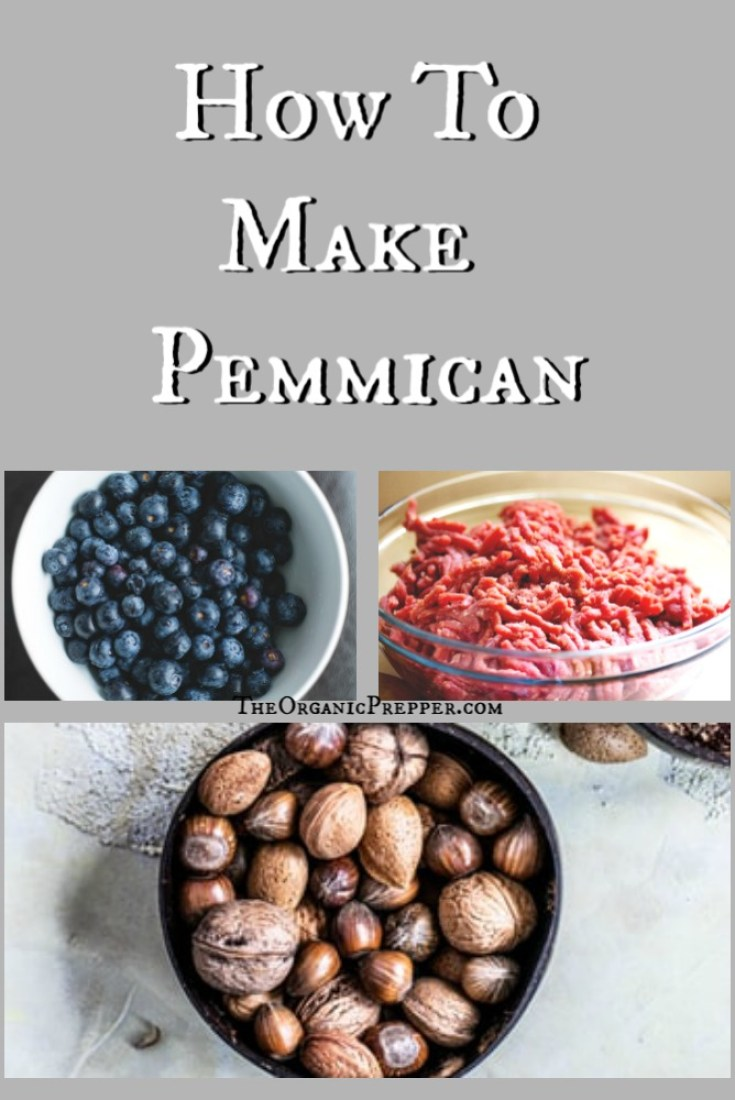 How to Make Your Own Pemmican