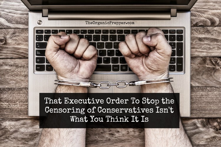 That Executive Order To Stop the Censoring of Conservatives Isn't What You Think It Is
