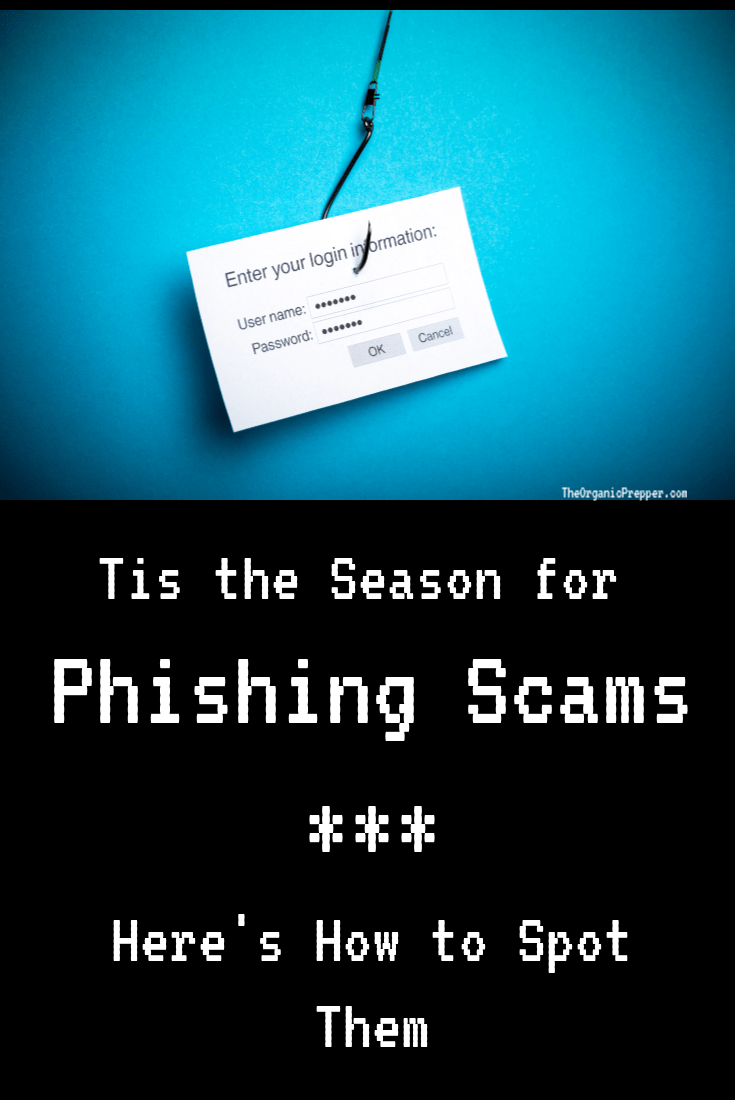 Phishing emails are in full swing and are out to get our hard-earned money as fast as they possibly can. Here\'s how to handle them. | The Organic Prepper