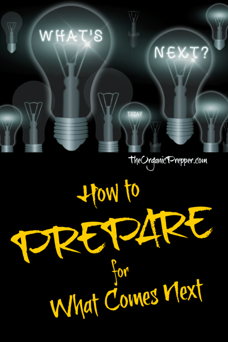While it\'s impossible to guess precisely what comes next, here\'s what we can surmise from current events and how we can prepare for the future. | The Organic Prepper #prepare #secondwave #economy #prepping #survival