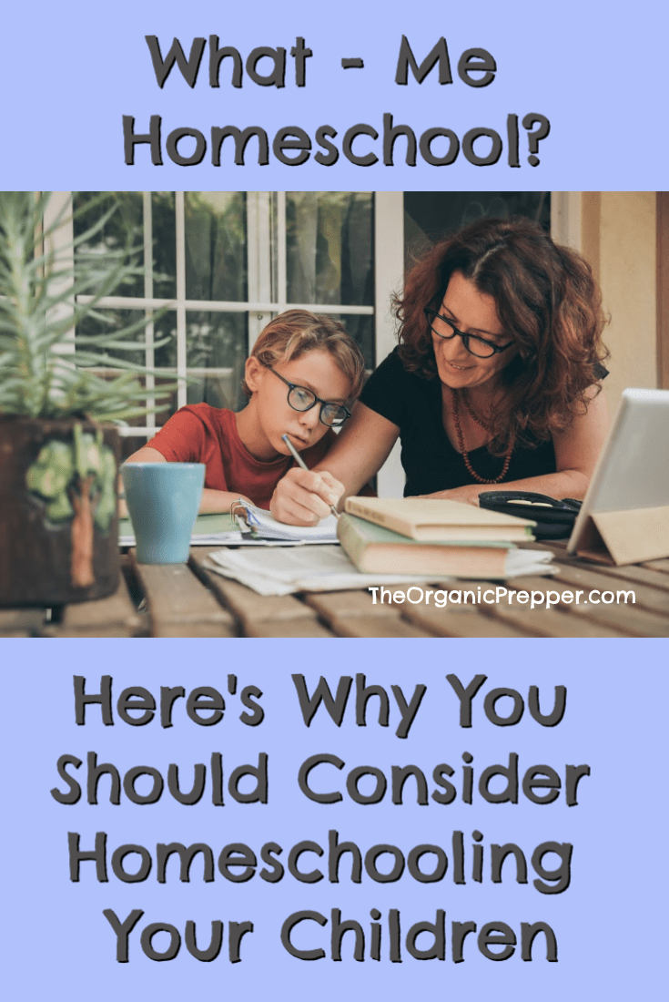 Have you had less than desirable experiences in schools? Have you known children who had learning differences or were bullied and didn\'t thrive in a classroom? Maybe you should consider homeschooling. | The Organic Prepper #homeschooling #homeschool