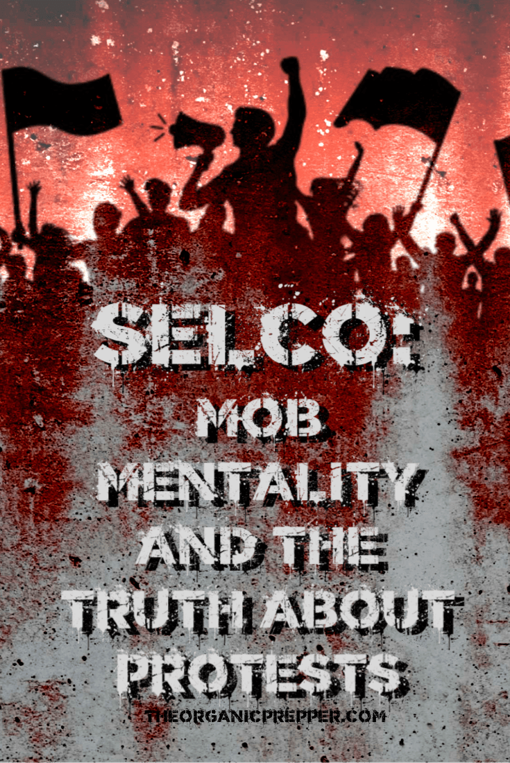 It\'s never been more important to understand the psychology of mob mentality and the truth about protests. In this article, Selco shares what he knows. | The Organic Prepper #protests #riot #mobmentality #survival