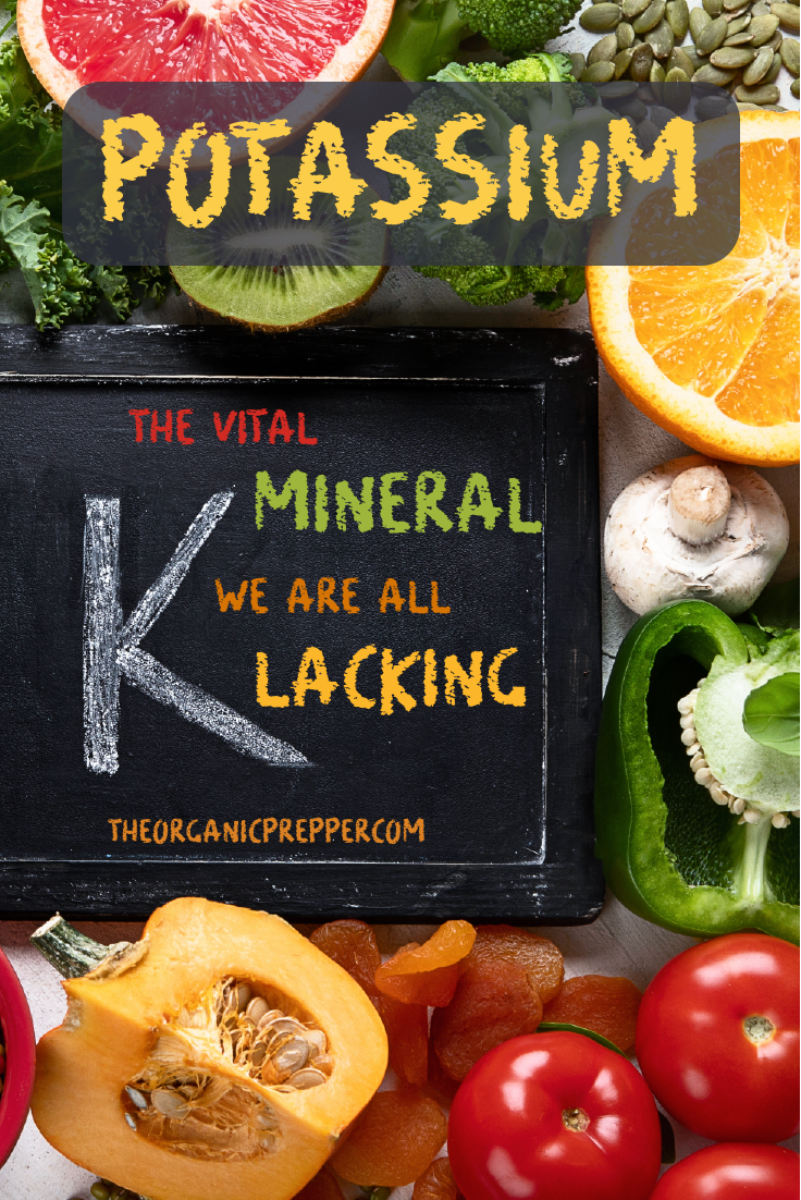 Did you know that nearly everyone is lacking in potassium? Here are some of the benefits of this vital mineral and some ways to increase your intake. | The Organic Prepper