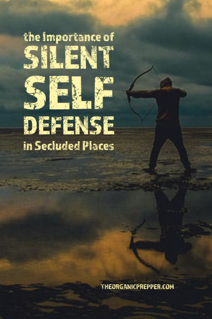 The Importance of Silent Self-Defense Weapons in Secluded Places