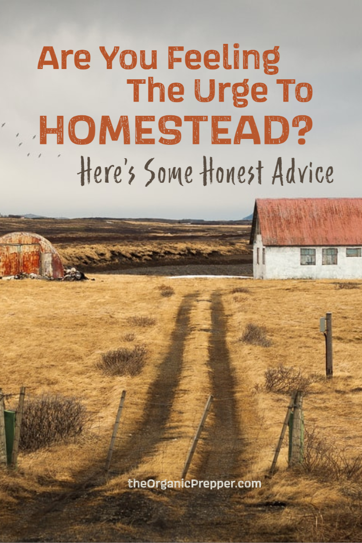 Are You Feeling the Urge to Homestead? Here\'s Some Honest Advice