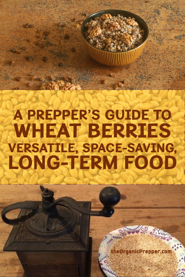 A Prepper\'s Guide to Wheat Berries: Versatile, Space-Saving, Long-Term Food