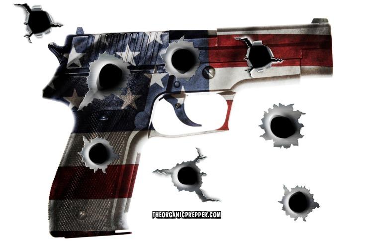 "Psych Evals, $800 a Year ""Insurance,"" a PUBLIC Gun Registry"