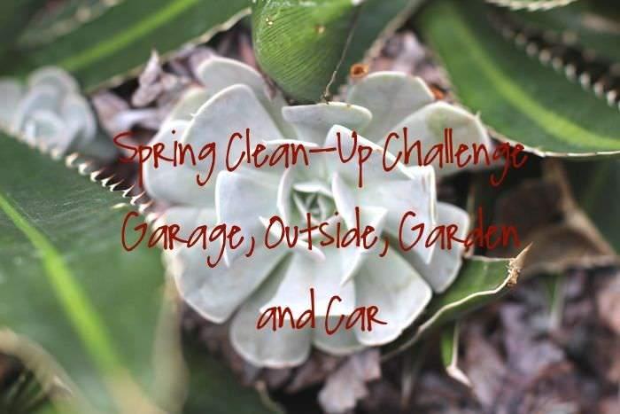 Spring Clean Up Challenge