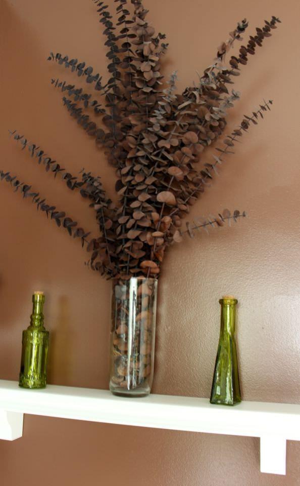 Powder Room Plant Shelf