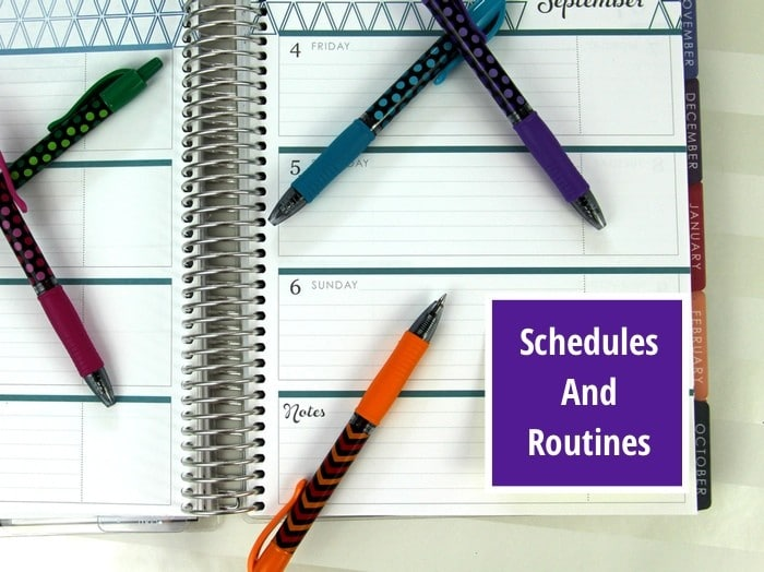 Setting Up Schedules And Routines
