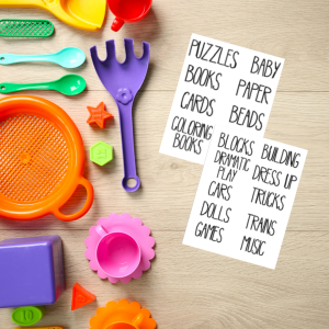 play food flat lay with text labels for organizing kids toys