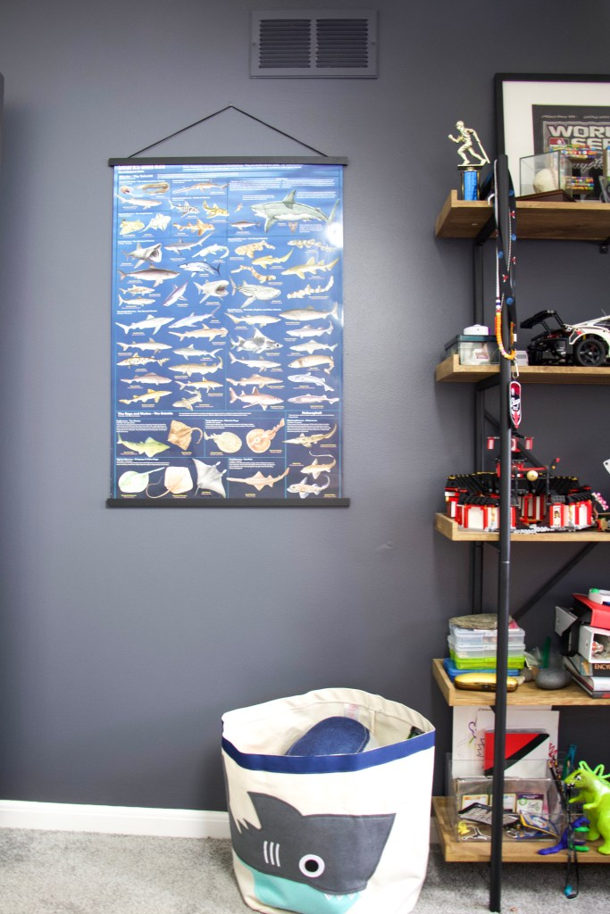 shark poster on poster hangers next to shelves