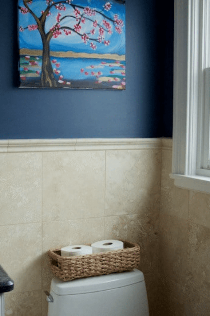 baskets for toilet paper on back of toilet with picture and blue walls