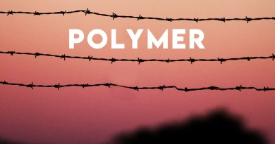 Polymer Zealots Box cover