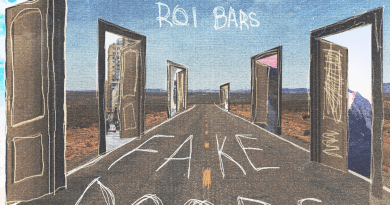 Roi Bars Fake Doors cover