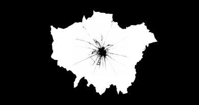 The Director's Cuts Logo