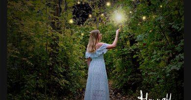Will Harrison & Hannah Koski Send in the Fireflies single cover