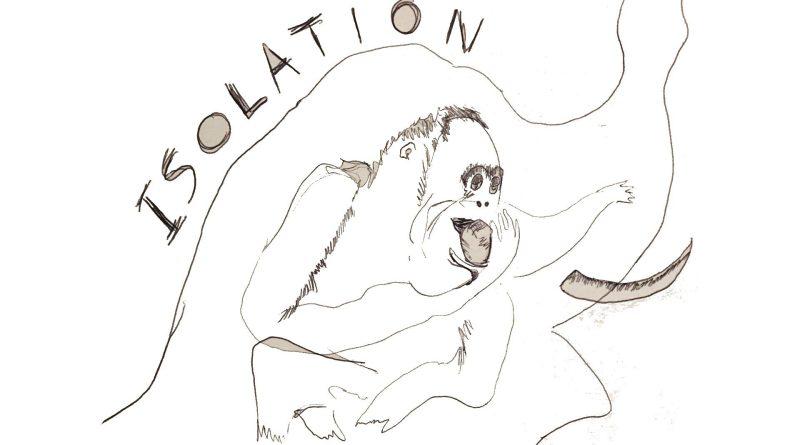 Xylaroo Isolation single cover