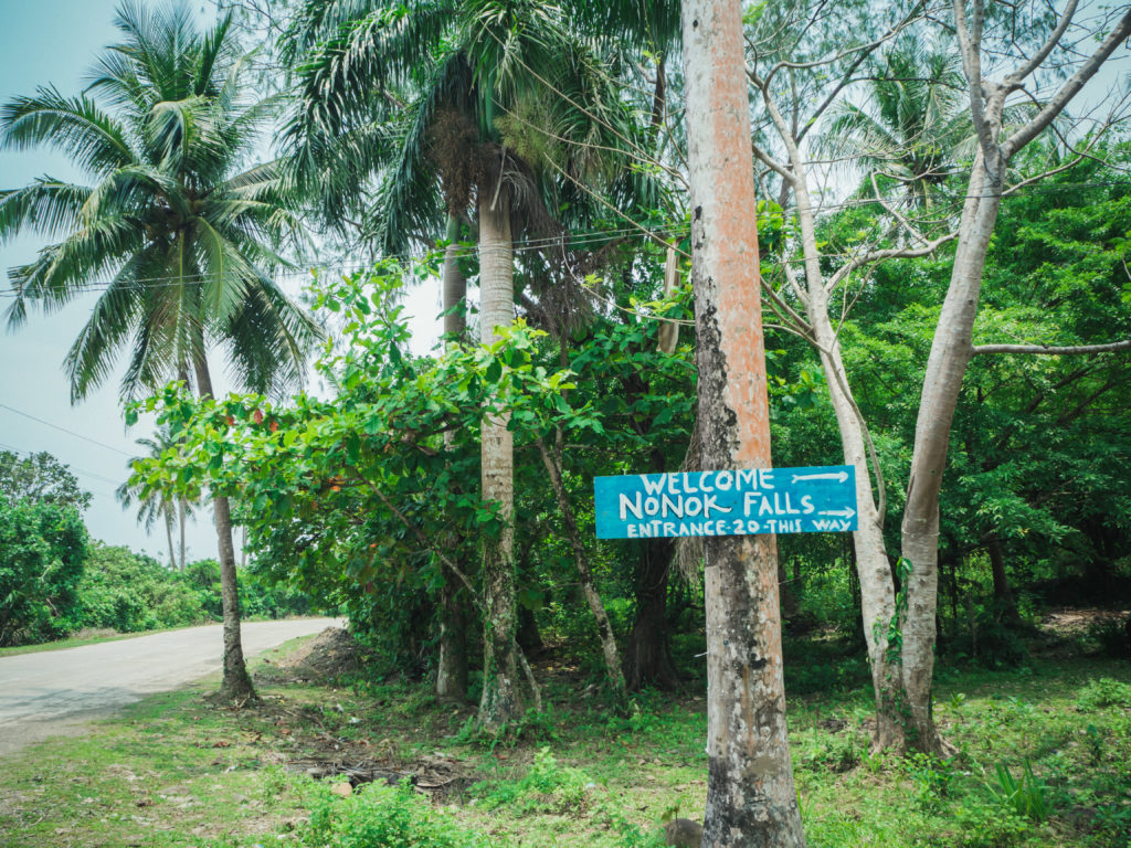 entrance to nonok falls in real quezon with coconut trees and street signage