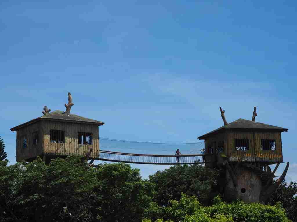 tree house with hanging bridge fantasy world in lemery batangas