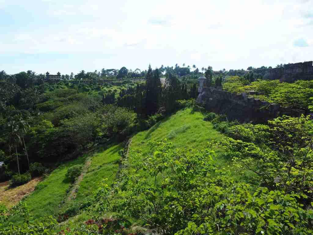 garden in fantasy world in lemery batangas