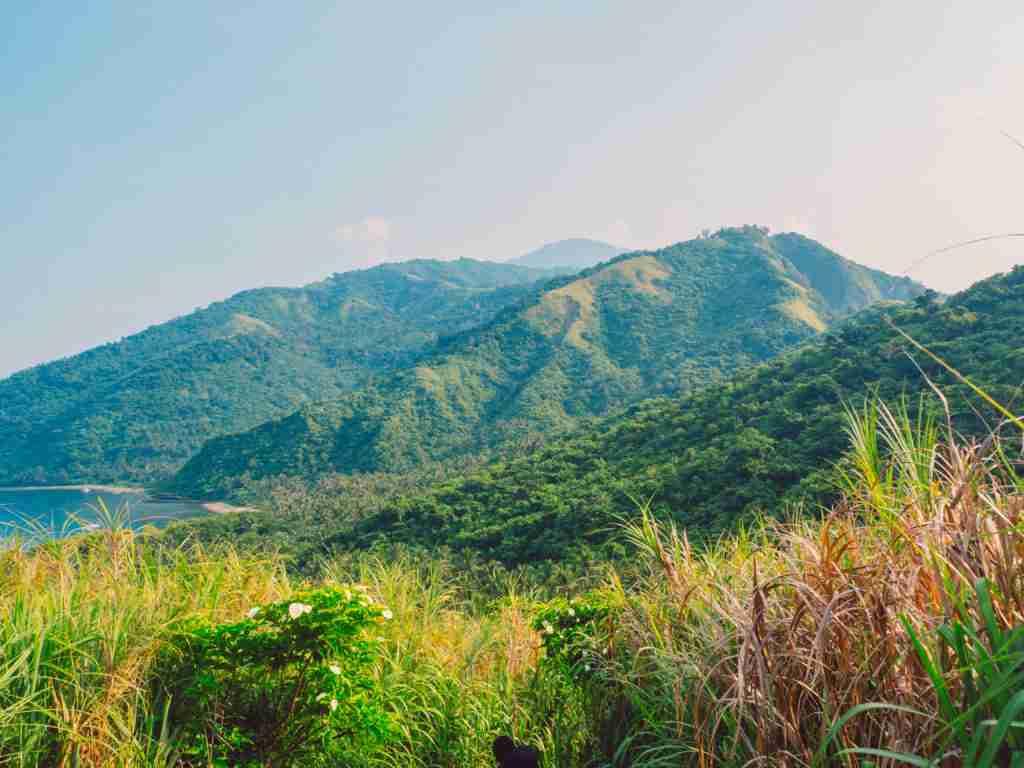 dingalan mountain grassland slopes