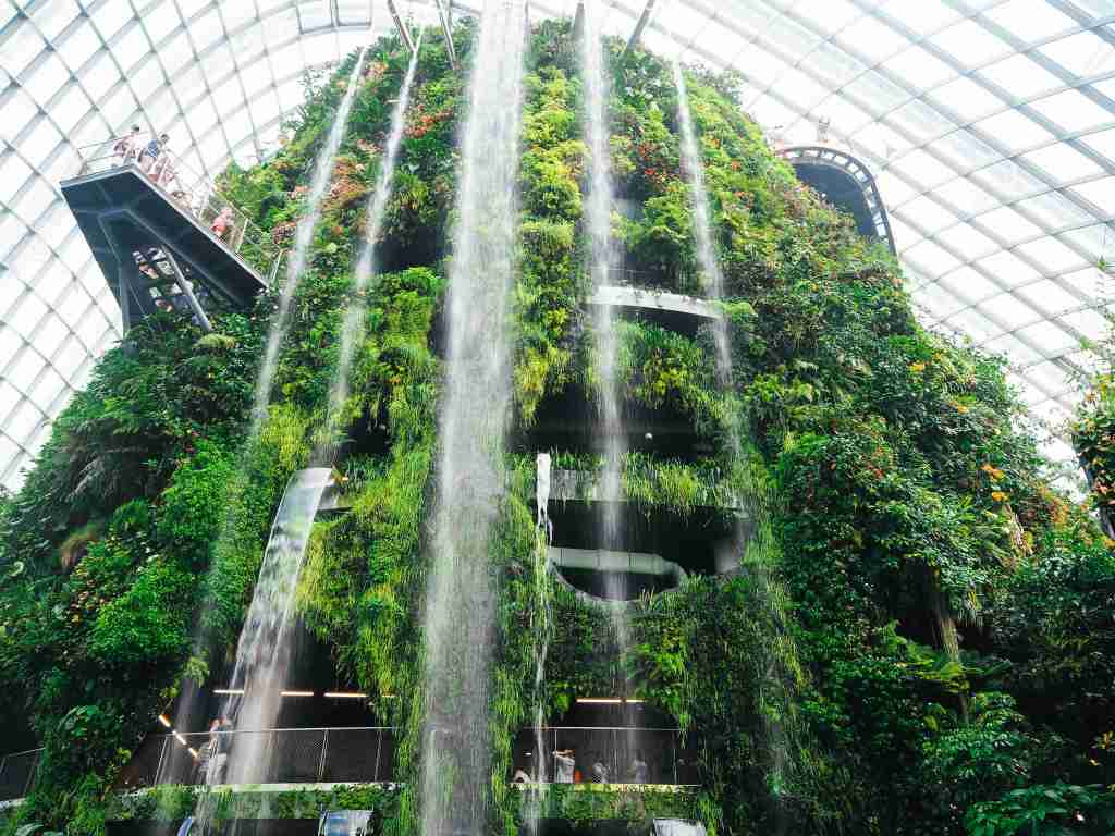 cloud forest waterfall in singapore