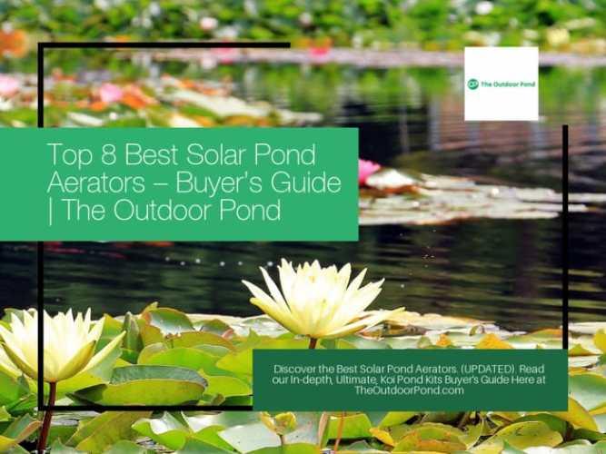 Top 8 Best Solar Pond Aerators