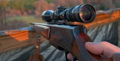 Boar Hunting in Argentina