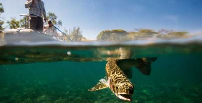 Trout fishing in Patagonia