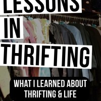 Lessons in Thrifting | July Thrift Haul Video