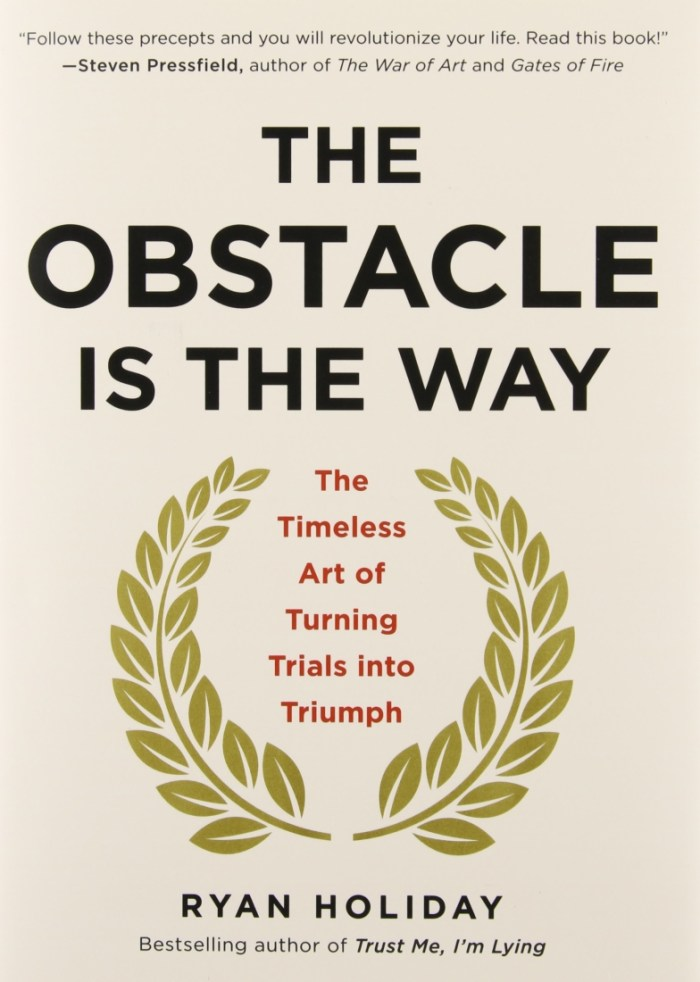 The Obstacle is the Way by Ryan Holiday - Best 3 Books I Read in 2016