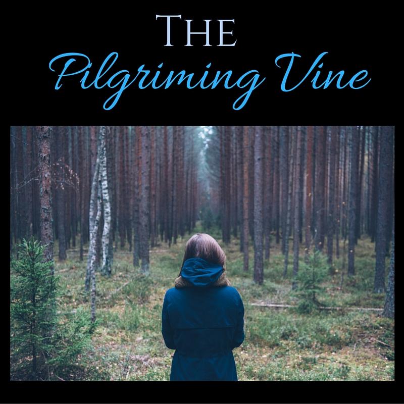 The Pilgriming Vine