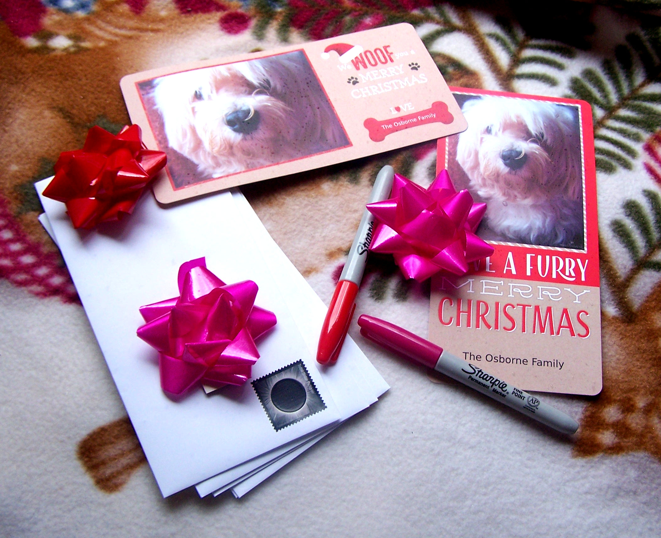 hallmark walmart photos photo cards holiday christmas pet dog diy one hour delivery pick up in store ;oehllmark pr brand ambassador cards paper greetins