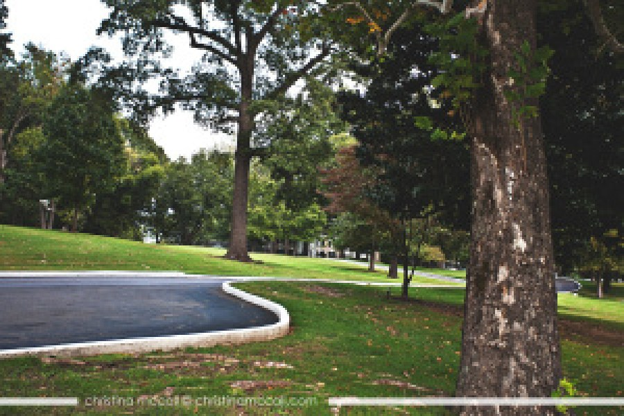 Graceland in Memphis, Tennessee by Christina McCall