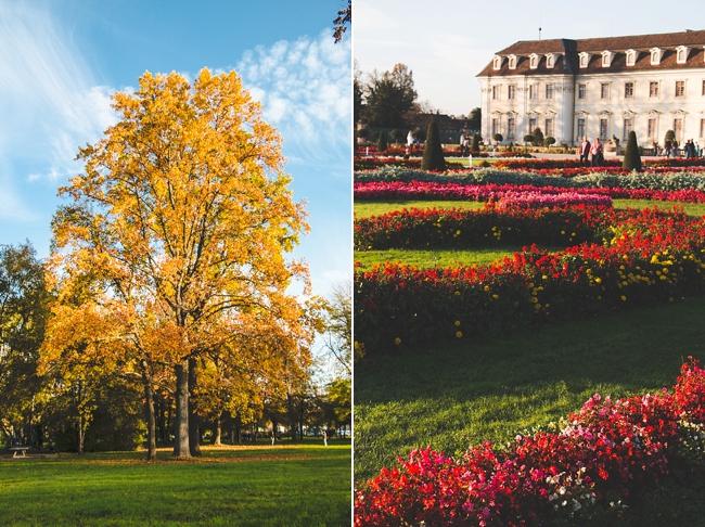 Autumn_Germany-1_Germany.jpg