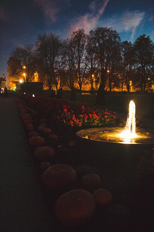 Autumn_Germany-25_Germany.jpg