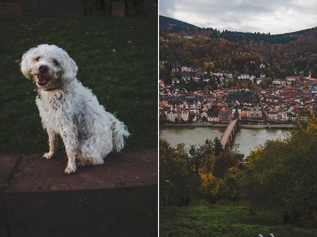 Autumn_Germany-26_Germany.jpg