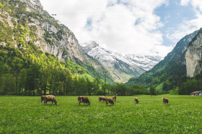 Lauterbrunnen, Switzerland - The Overseas Escape-23