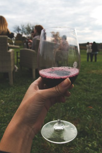 Virginia Wine Country - The Overseas Escape-30
