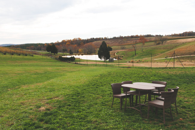 Virginia Wine Country - The Overseas Escape-35