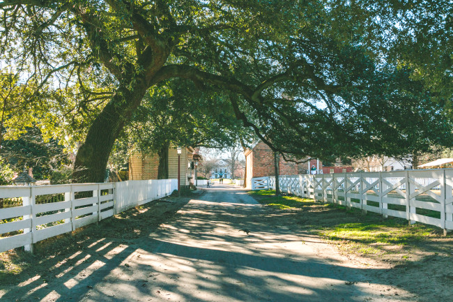 Colonial Williamsburg - The Overseas Escape-27