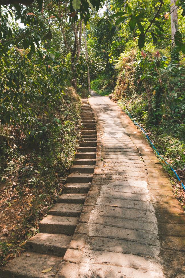 New Bali Tours - The Overseas Escape-42