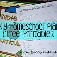 """Our Homeschool """"Tot School"""" 34 Week THEME Plan {with free weekly planner}"""