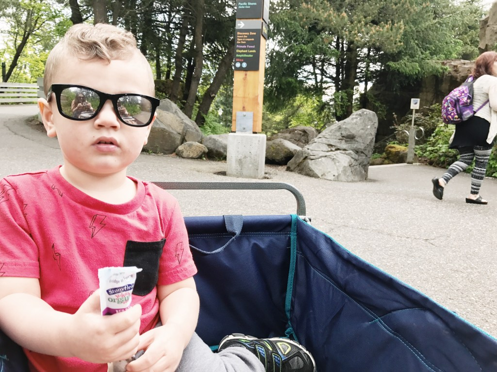 The Oregon Zoo & Stonyfield   How to get free zoo tickets in YOUR area!